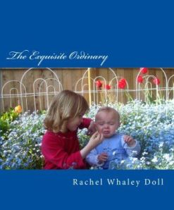 cover of Exquisite Ordinary